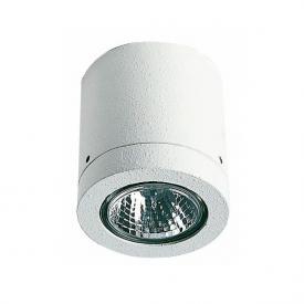 Albert ceiling light for pressed glass reflector bulbs