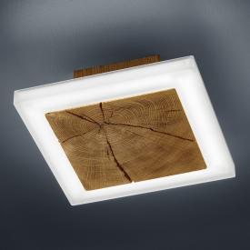 BANKAMP GAYA WOOD LED ceiling light / wall light