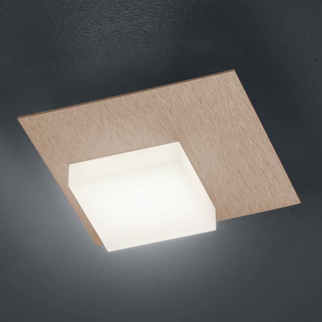 BANKAMP CUBE LED ceiling light / wall light 1 head with dimmer