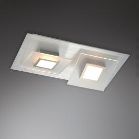 BOPP Frame LED ceiling light/ceiling spotlight 2 heads