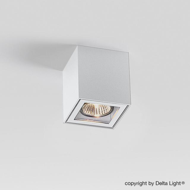 DELTA LIGHT Boxy + ceiling light / spotlight