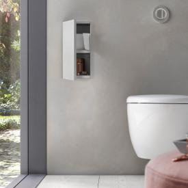 Emco Asis Plus concealed toilet module hinged left