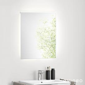 Evineo ineo illuminated mirror