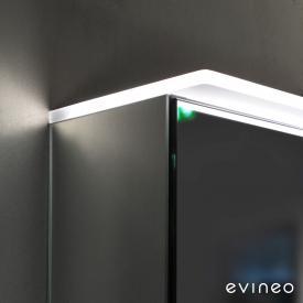 Evineo ineo Module d'éclairage pour armoire de toilette I : 60 cm