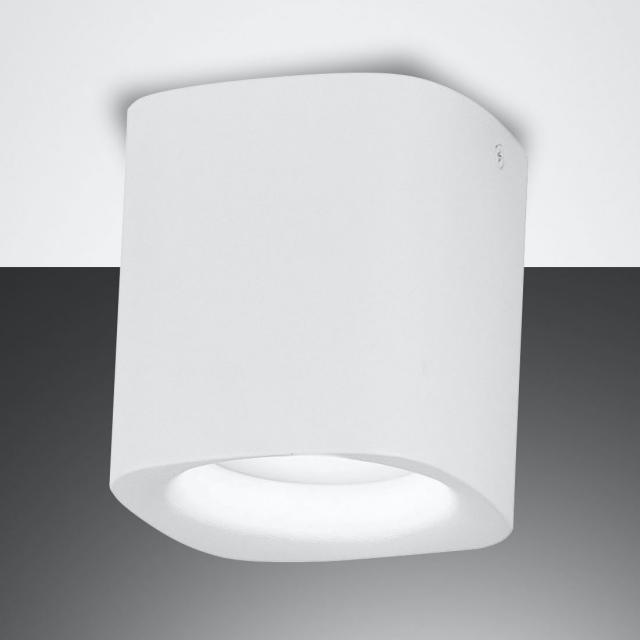 FABAS LUCE Smooth spotlight / ceiling light, 1 head
