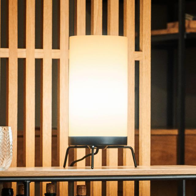 FRITZ HANSEN PM-02 table lamp
