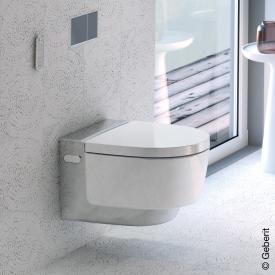Geberit AquaClean Mera Classic complete shower toilet set white/chrome