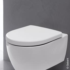 Geberit iCon toilet seat according to DIN 19516 with soft-close