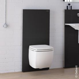 Geberit Monolith Plus sanitary module for wall-mounted toilet H: 114 cm glass black