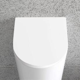 Globo FORTY3 urinal lid with soft-close