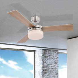 Globo Lighting Alana ceiling light/fan