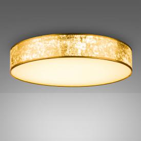 Globo Lighting Amy LED ceiling light with dimmer and CCT