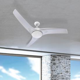 Globo Lighting Primo ceiling light/fan