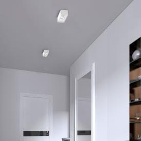 helestra CAS LED ceiling light/spotlight, double