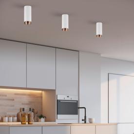 Helestra Pont ceiling light/spotlight, round