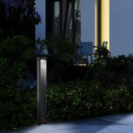 Helestra SKY LED bollard light