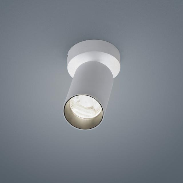 helestra RIWA LED ceiling light / spotlight 1 head