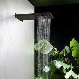 Herzbach Design iX PVD overhead rain shower multi-function 2 black steel