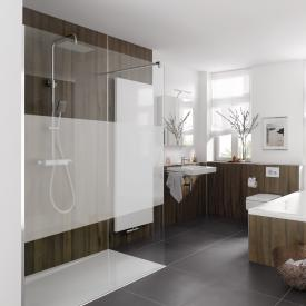 HSK Pro Walk In glass element with wall profile TSG matt centre / chrome look