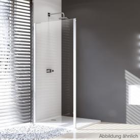 HÜPPE Design pure side panel for sliding door 2 piece with fixed segment/adjacent piece TSG clear / matt silver