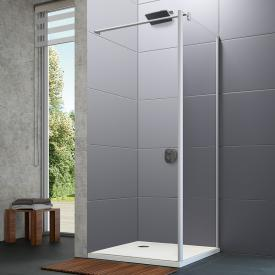 HÜPPE Design pure side panel for two-way door TSG clear / matt silver