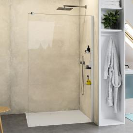 HÜPPE Select+ standalone side panel TSG clear with ANTI-PLAQUE / matt silver