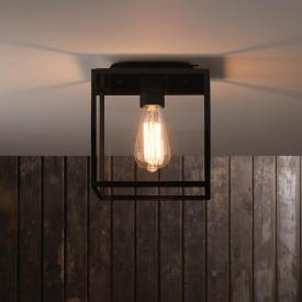 astro Box ceiling light