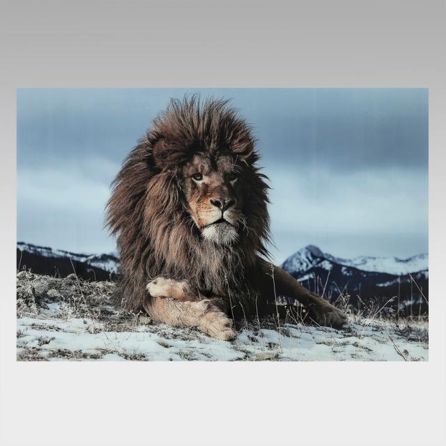 KARE Design Proud Lion glass picture