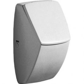 Geberit Pareo wall-mounted urinal W: 30 H: 52 D: 26.5 cm white, with KeraTect