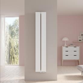 Kermi Decor-Arte Plan radiator for hot water operation white, 1127 Watt