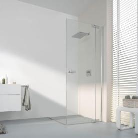 Koralle S800 swing door corner entry TSG transparent / silver high gloss