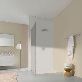 Koralle S808 partition for swing door TSG transparent / silver high gloss