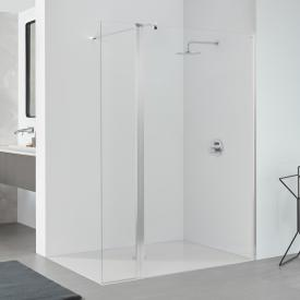 Koralle SL410 walk-in with hinged element TSG transparent / matt silver