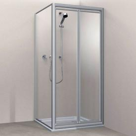 Koralle Twiggy Top swing door for partition or recess Polyrit aquaperl transparent / matt silver