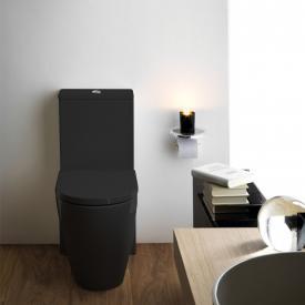 Kartell by Laufen close-coupled, floorstanding washdown toilet, rimless black