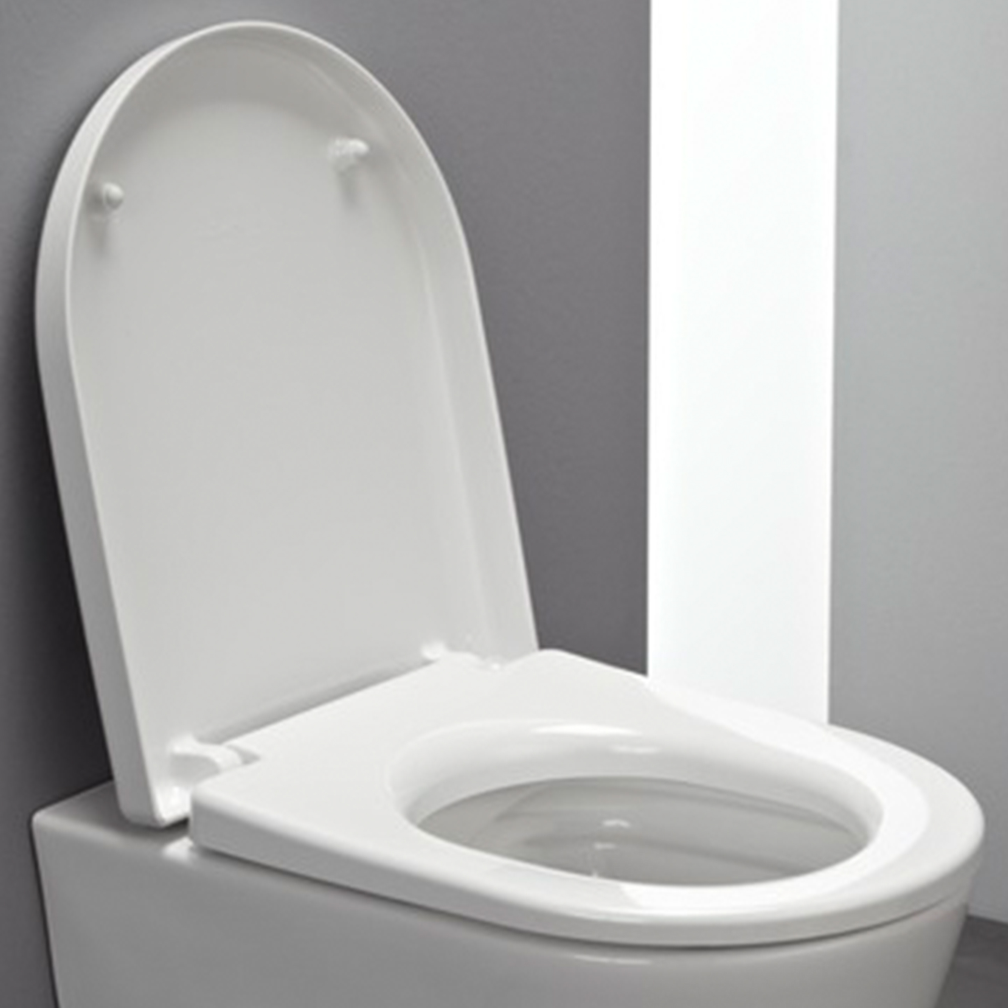 Laufen Pro Toilet Seat With Lid For