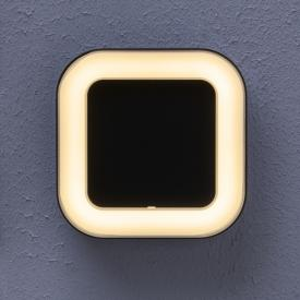 LEDVANCE Endura Style Square LED ceiling light / wall light