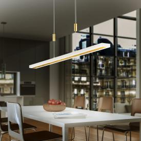 luce elevata gaya LED pendant light