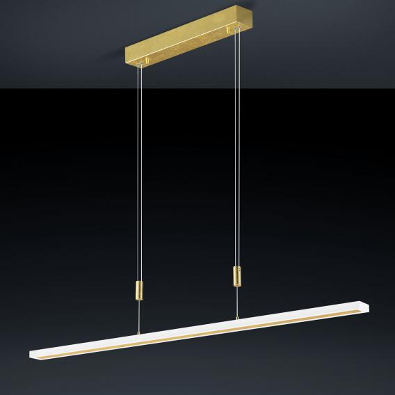 luce elevata gaya LED pendant light
