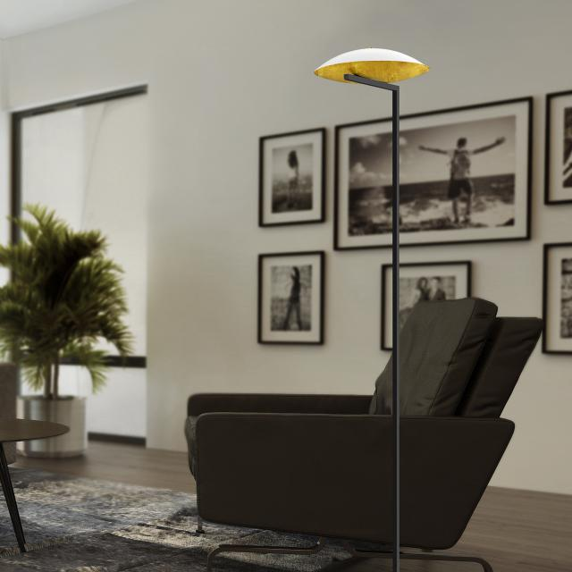 luce elevata pure up LED floor lamp with dimmer
