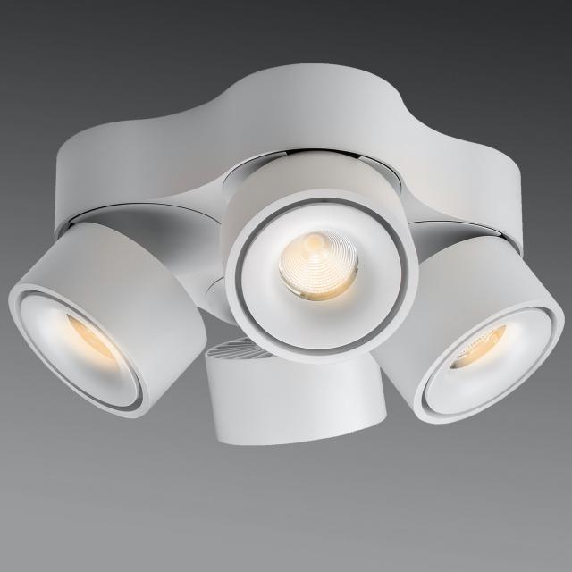lumexx Easy Quattro LED ceiling light / spotlight, 4 heads