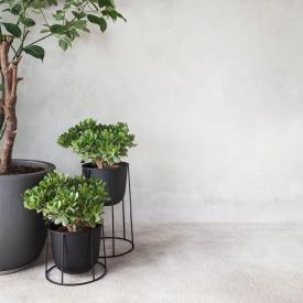 Menu Wire stand for plant pot