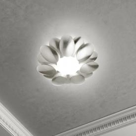 Milan Obolo LED ceiling light