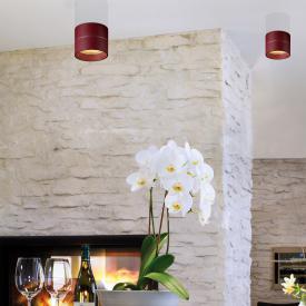 Oligo TUDOR S LED ceiling light