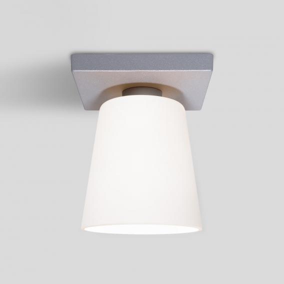 Oligo DONATA ceiling spotlight