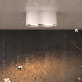 Philips myLiving Phase LED ceiling light/spot 2 heads