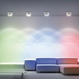 Paul Neuhaus Julian RGBW LED ceiling/spot light with dimmer