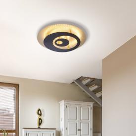 Paul Neuhaus Nevis LED ceiling light / wall light with dimmer