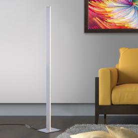 Paul Neuhaus Q-Cora LED floor lamp with dimmer and CCT