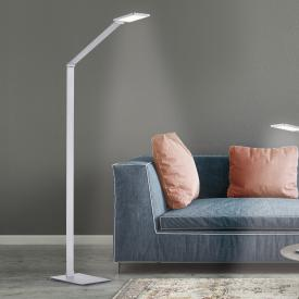 Paul Neuhaus Q-Hannes LED floor lamp with dimmer and CCT